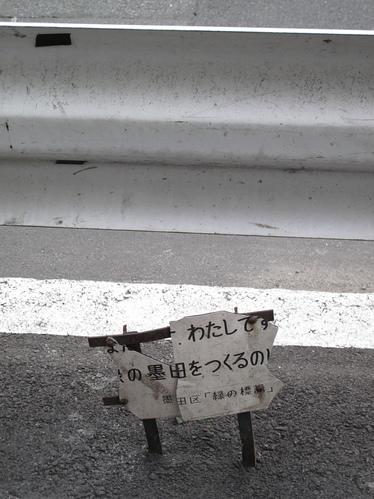 mochi_039.JPG